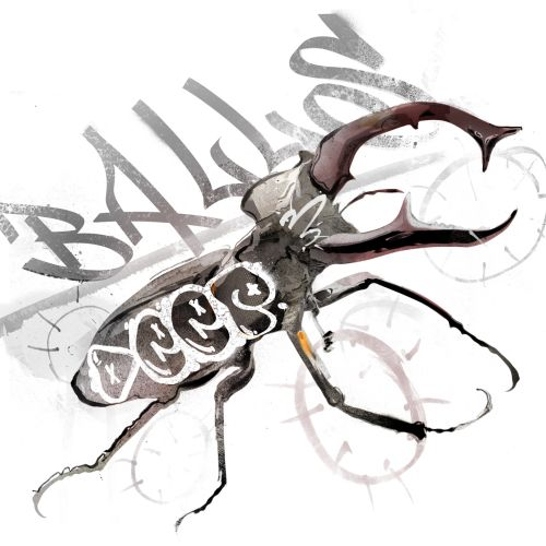 Animals Black and White of a Bug Ballos