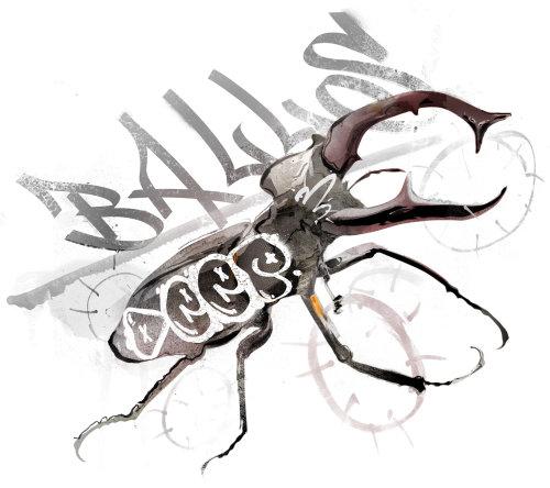 Animaux Noir et Blanc d'un Bug Ballos