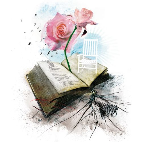 Rose plant, Opened book with text in it, Roots coming out from paper