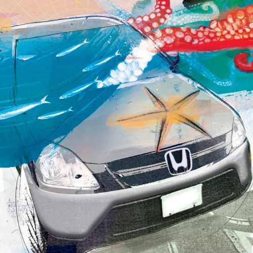 hyundai, car, vehicle, starfish, fish, transport, advert, drive, motor