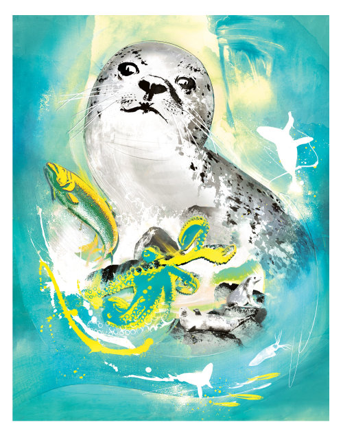 Watercolor Portrait illustration of Seal