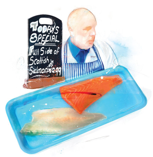 food, fish, portrait, food illustration, fillet, salmon, food illustrator, waitrose, fishmonger,