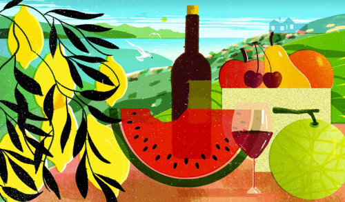 Wine and food digital illustration