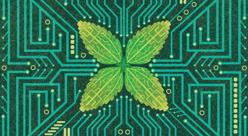Leaf on a circuit board