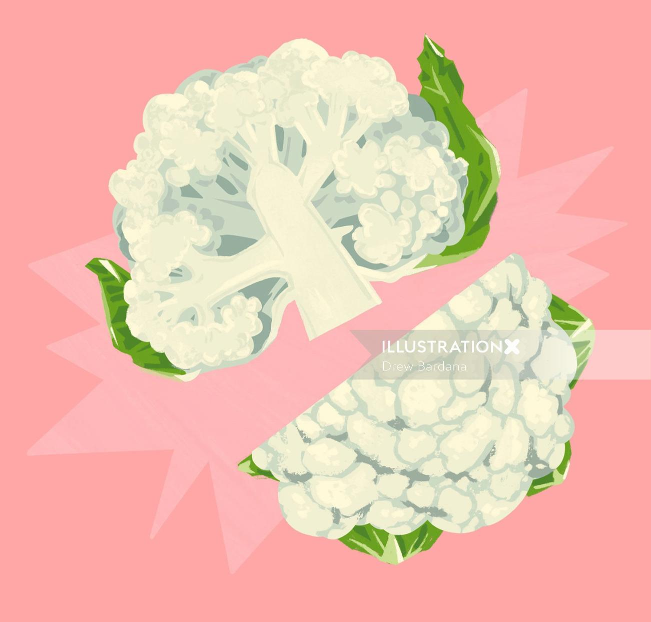 Food illustration of cauliflower