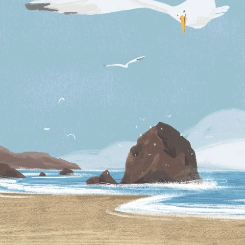 Conceptual art of Seagulls on Cannon Beach,