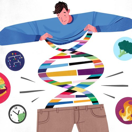 Illustration for Washington Post about the relationship between obesity and genetics.