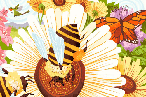 Conceptual illustration of Pollinators
