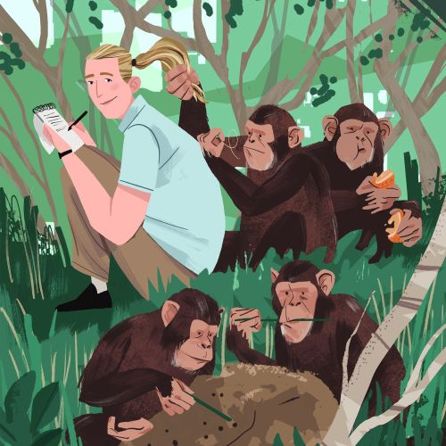 Jane Goodall and Chimpanzees