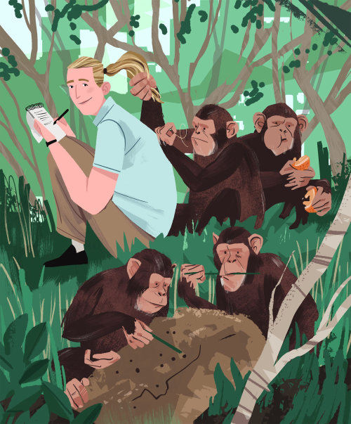 Jane Goodall e Chimpanzés