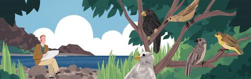 Darwin em Galápagos