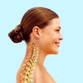 Woman backbone | Medical illustration collection