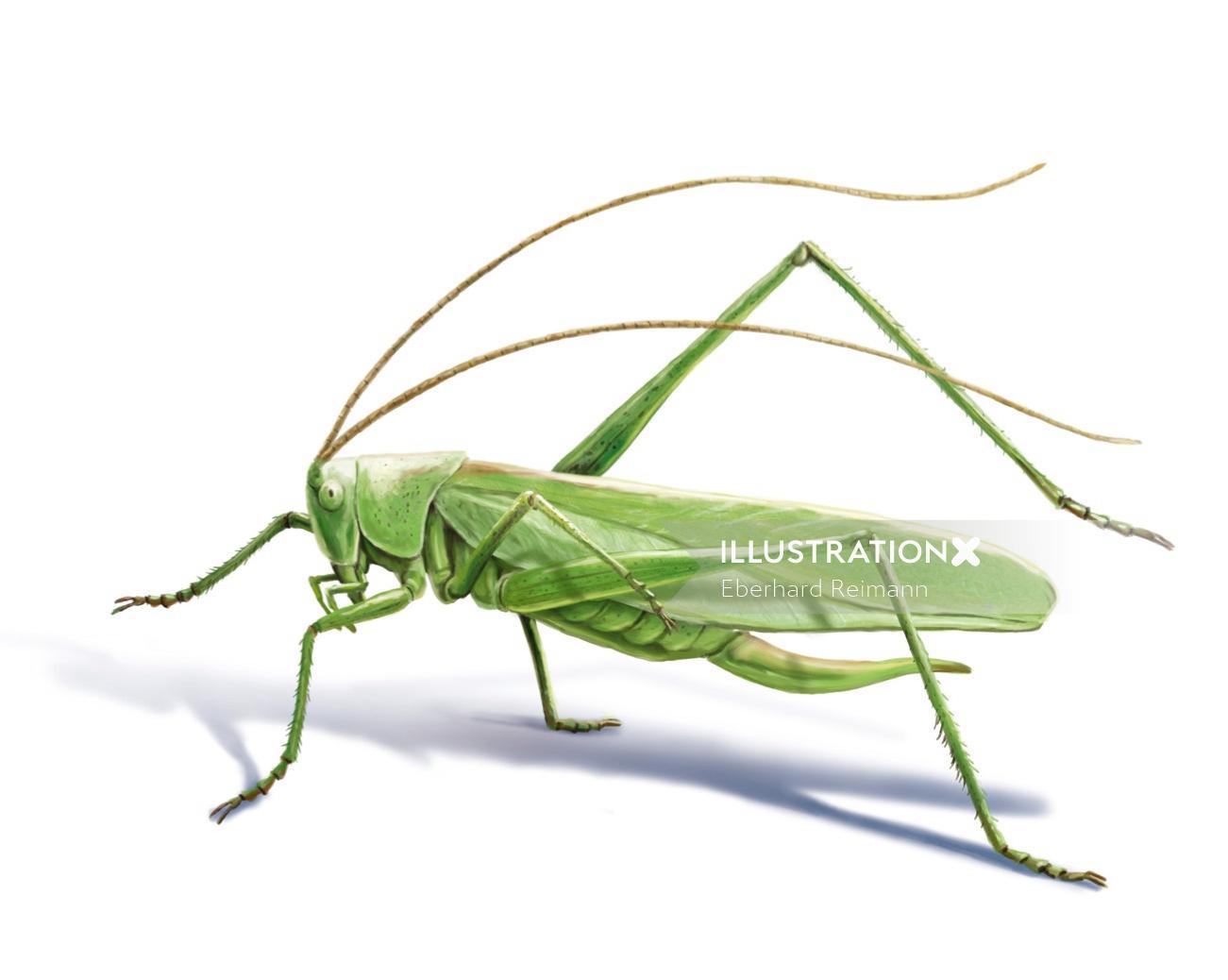 3d Grasshopper design