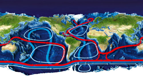 3d map of water circulation