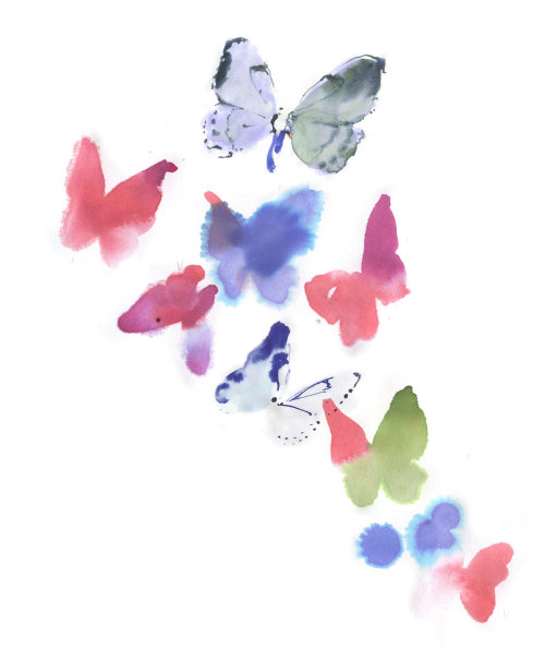 Butterfly's watercolor drawing