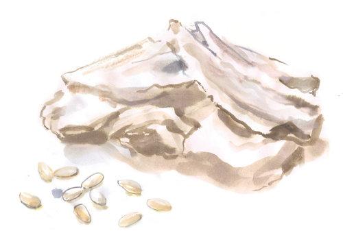 Wine meal rice grain packaging illustration for Pharmatheutical