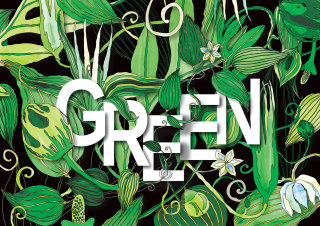 An illustration of green leaves