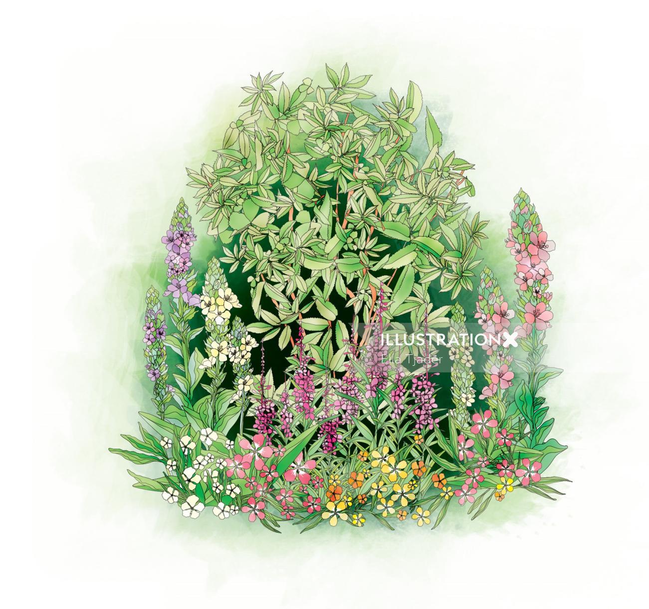 Vector illustration of grass