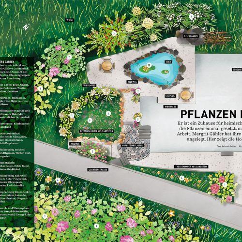 Contemporary artwork for Pflanzen Nach Plan