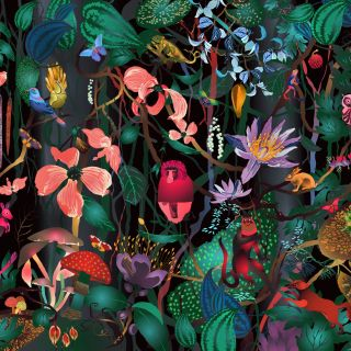 View Ella Tjader's illustration portfolio