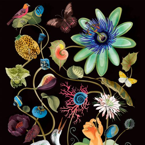 Ella Tjader International lifestyle & nature illustrator. Zurich