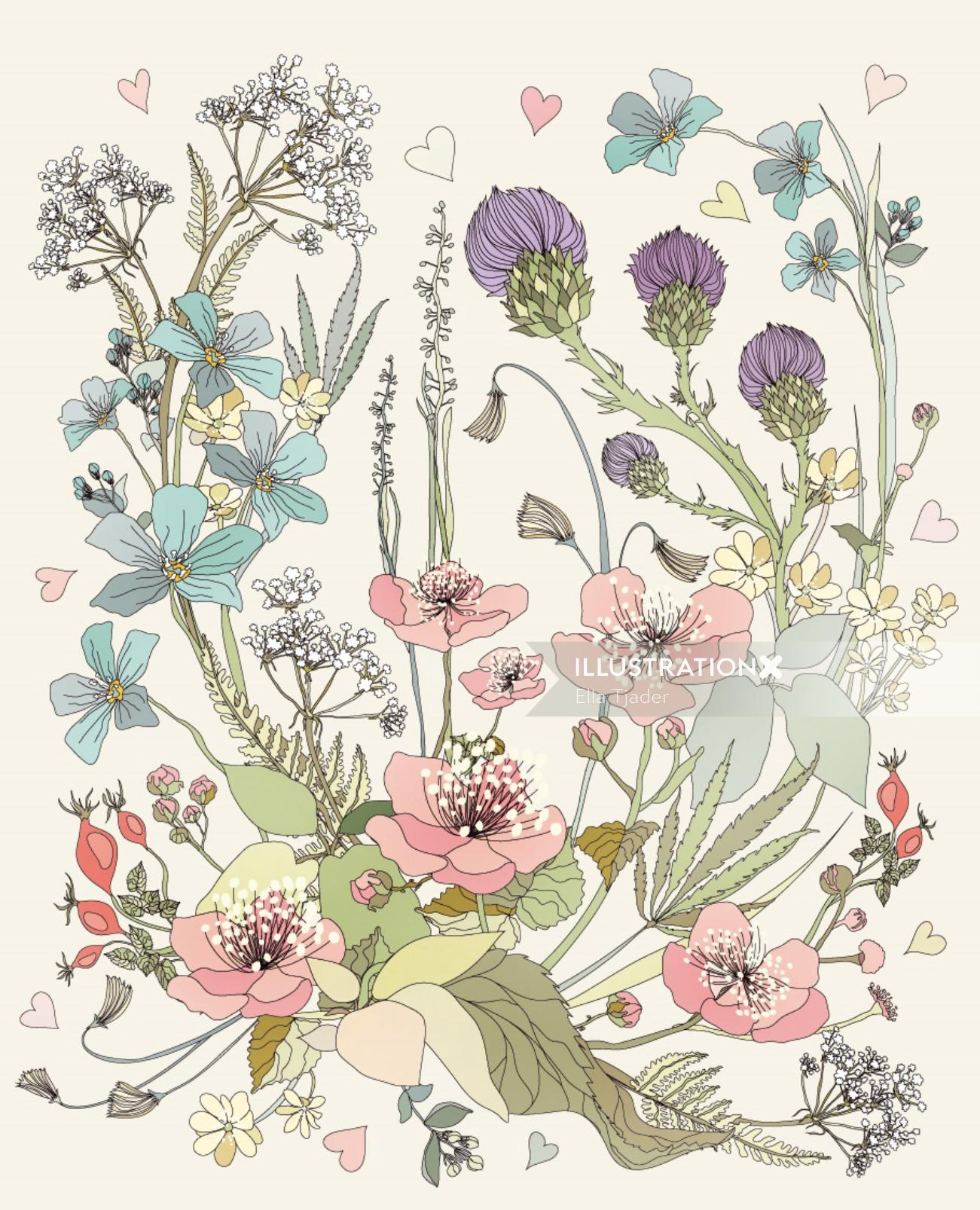 Illustration of Botanical plants