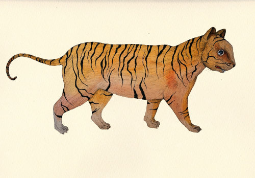 An illustration of a tiger