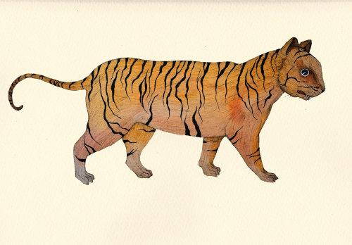 Uma ilustração de um tigre
