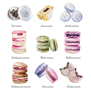 Macarons food illustration