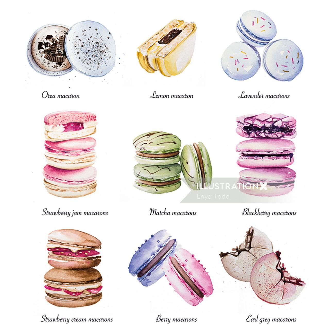 Macarons food illustration