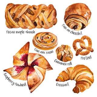 Selection of pastries food illustration