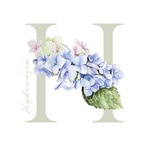 Stylistic Watercolour of Flower alphabet