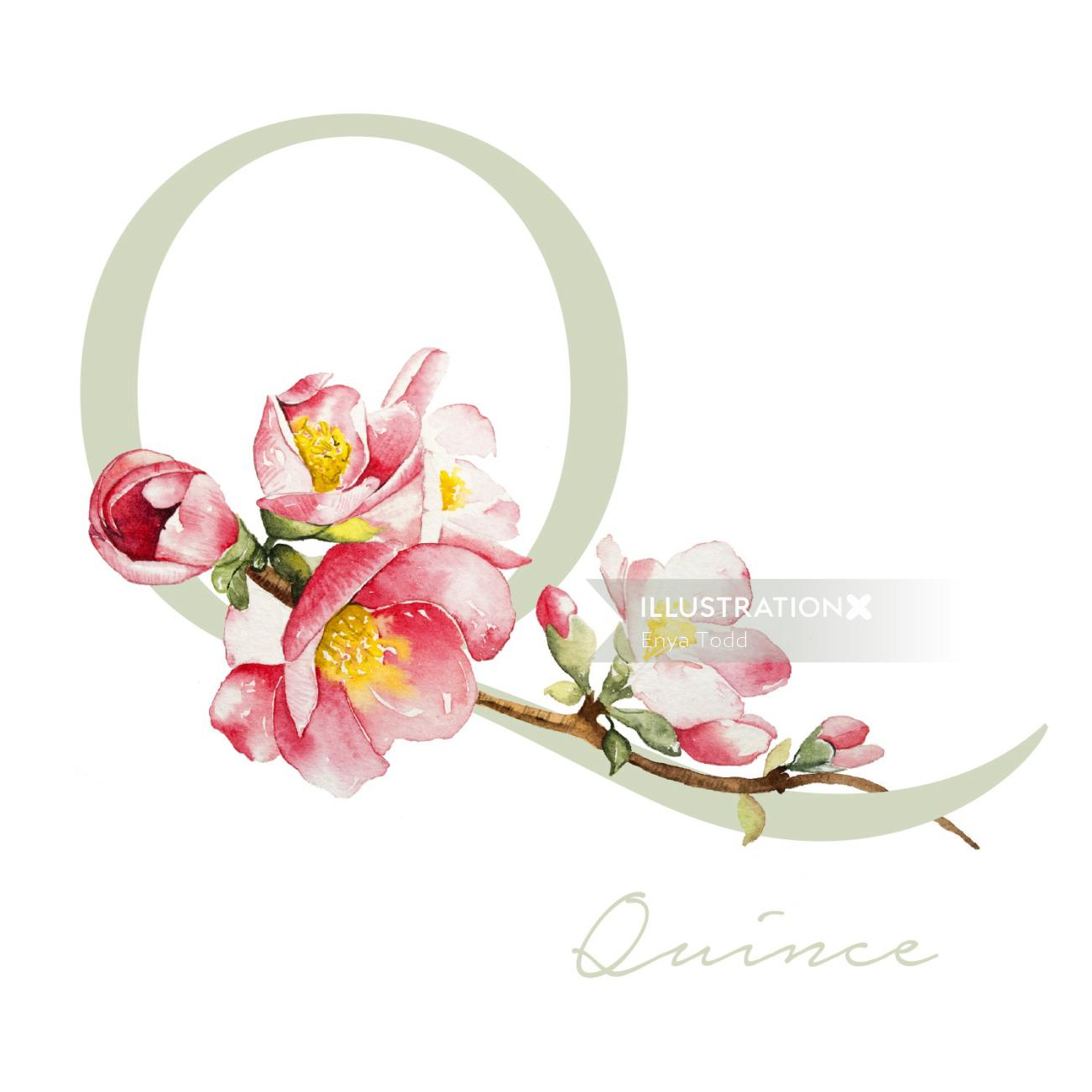 Flowers on alphabet P
