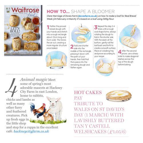 Editorial Illustration For Waitrose Food Magazine
