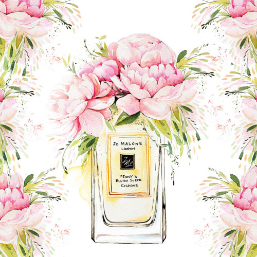 Watercolour of Jo Malone perfume