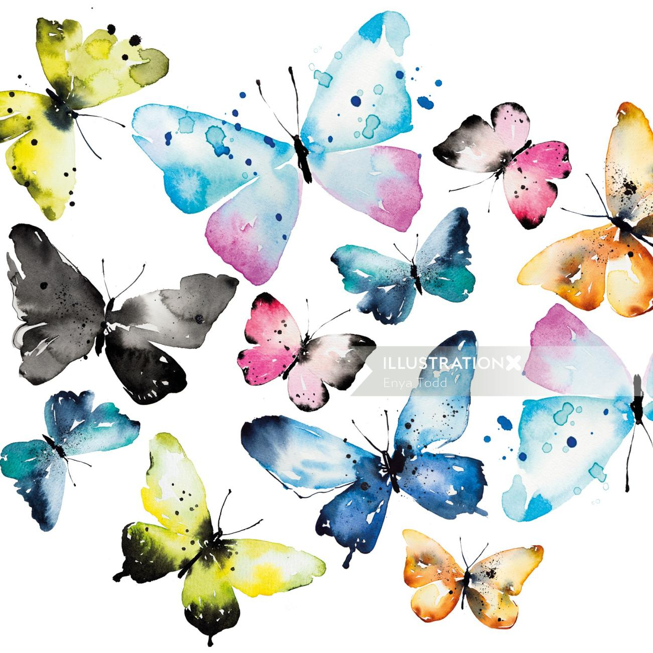 Butterflies Watercolour by Enya Todd