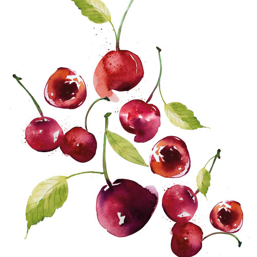 Cherries watercolour pattern design
