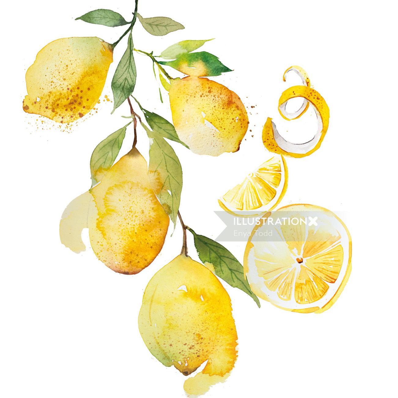 Lemons watercolour pattern design
