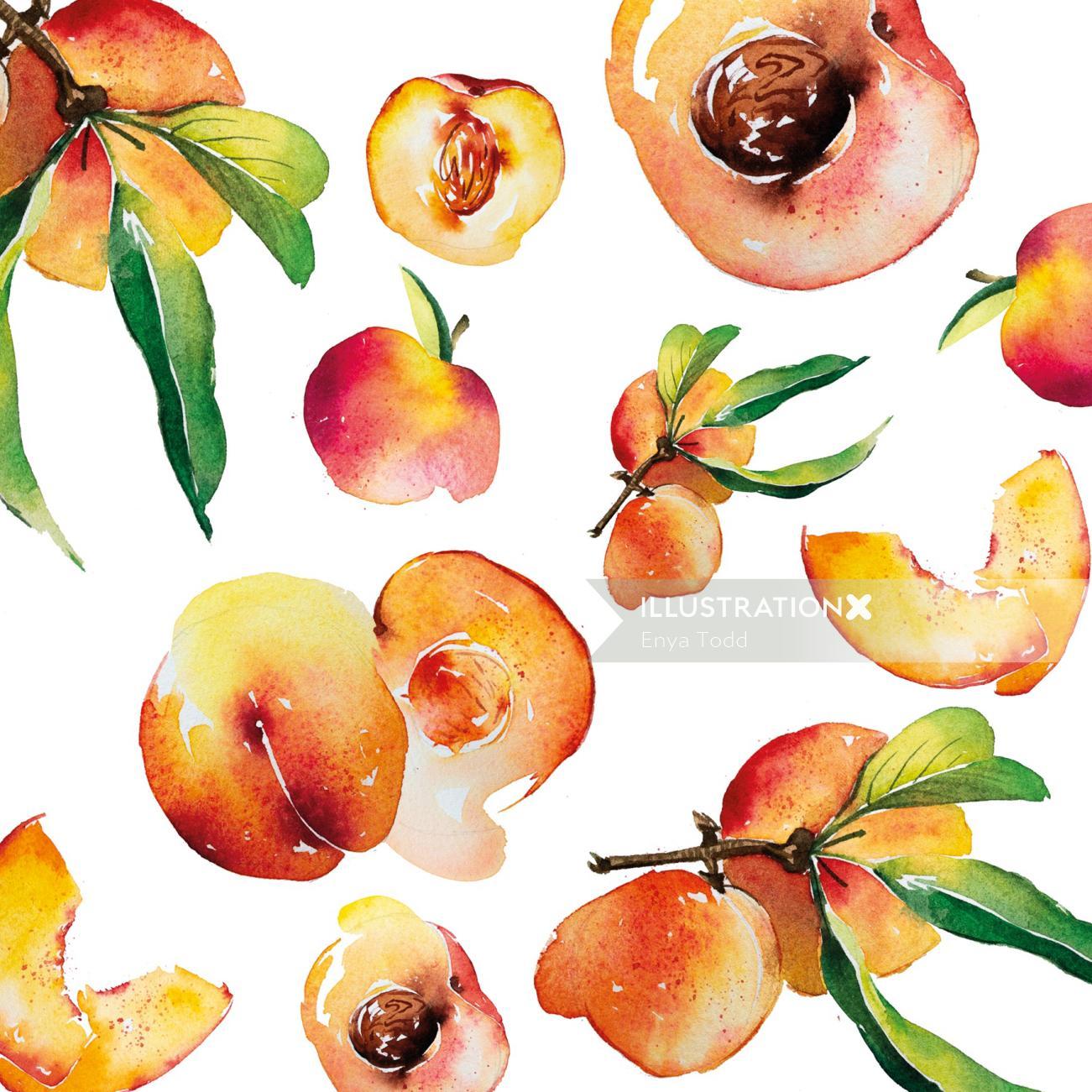 Watercolour of peach pattern