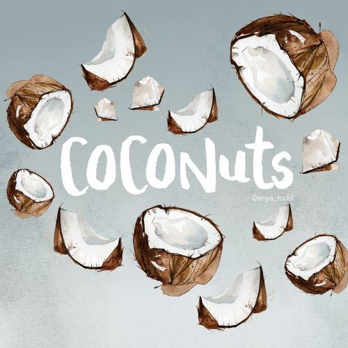 Pattern art of Coconuts