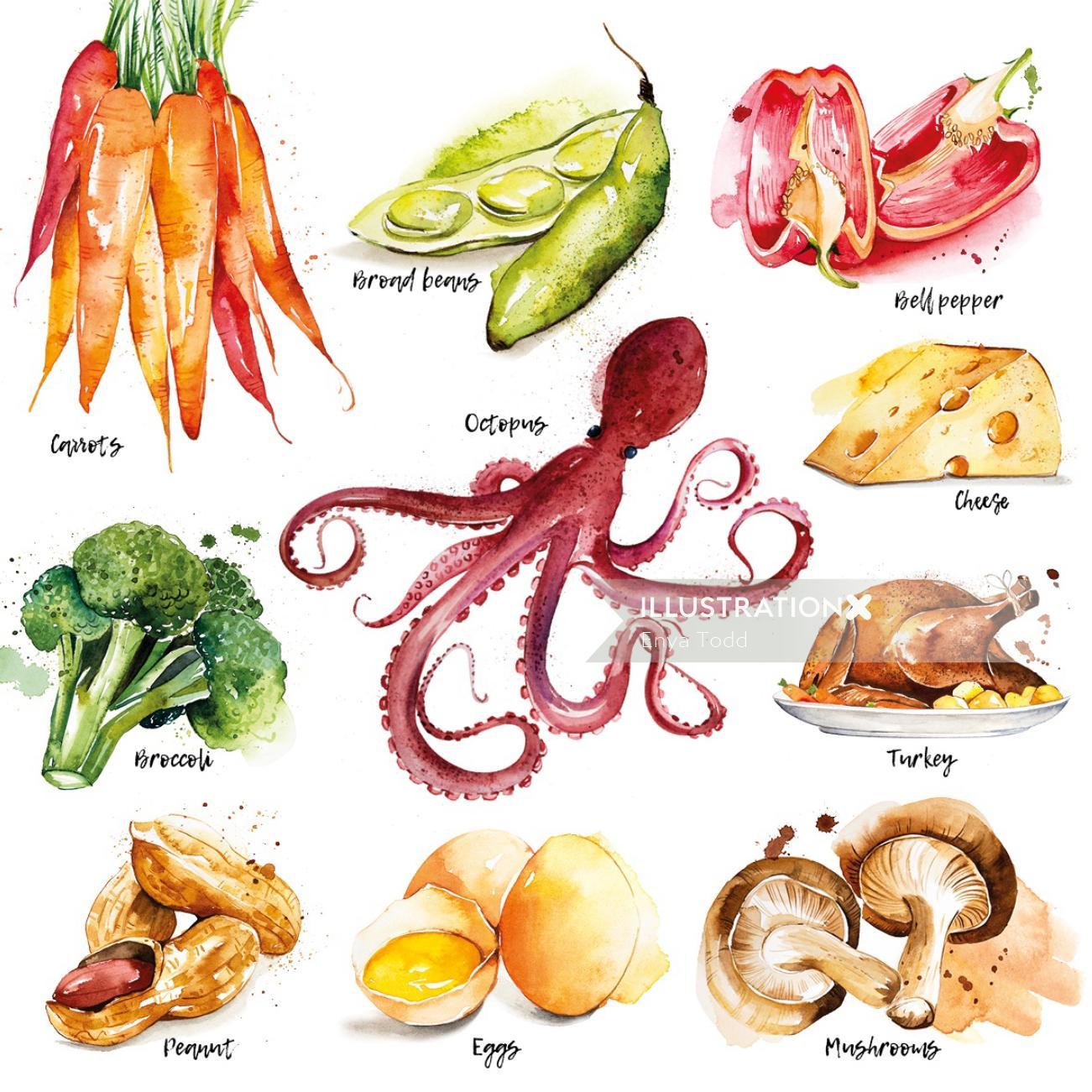 Vegetables illustration by Enya Todd