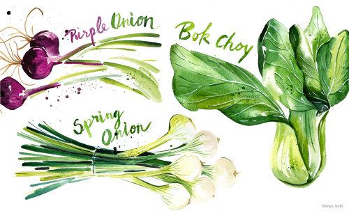 Comida y bebida Vegetal verde