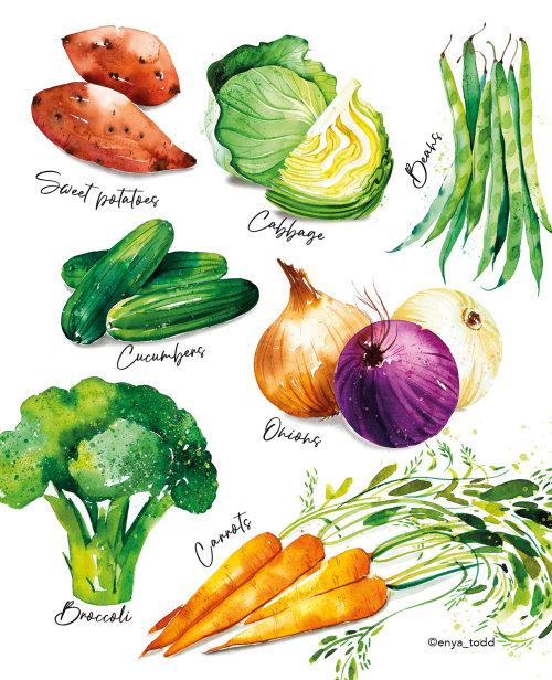 The humble veg