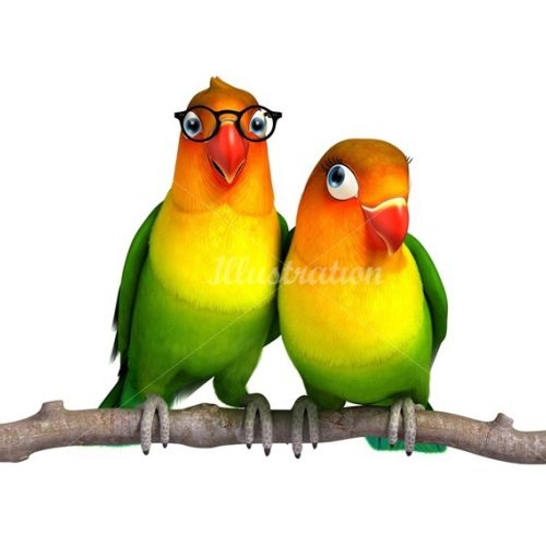 Illustration of parrots