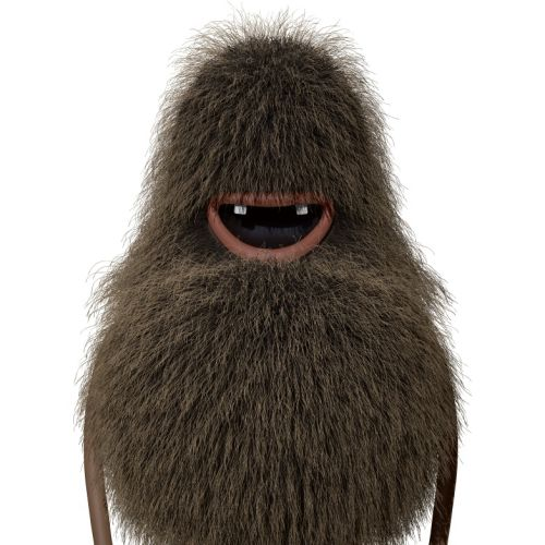 character design of hairy animal