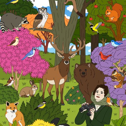 An Illustration For Conservationist Rachel Carson