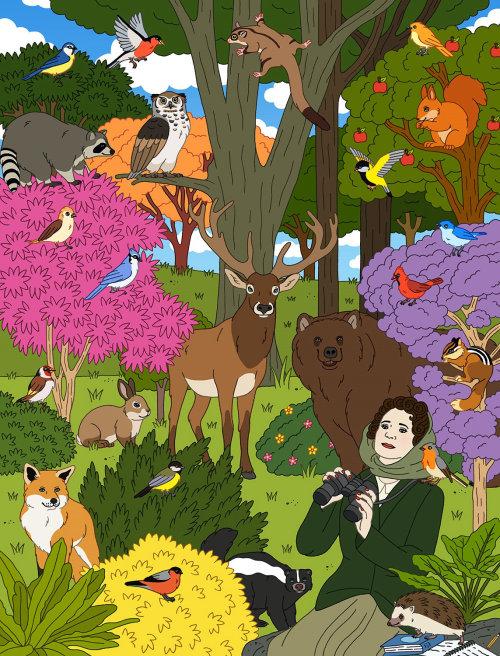 Uma ilustração para o conservacionista Rachel Carson