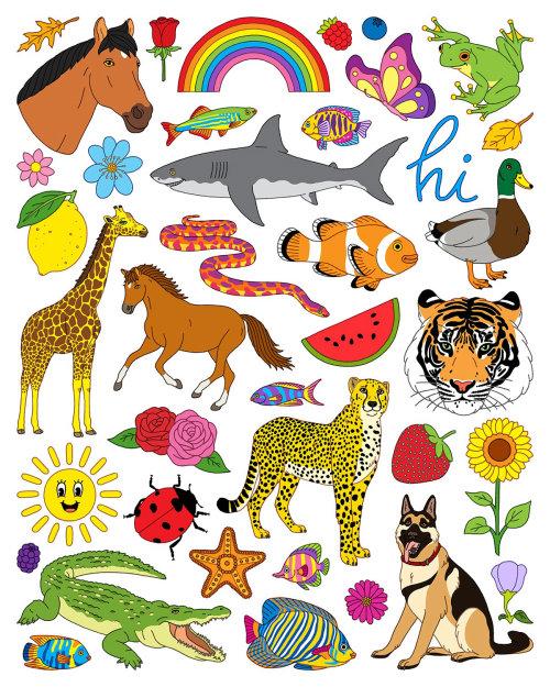 Colagem de animais e natureza pôster