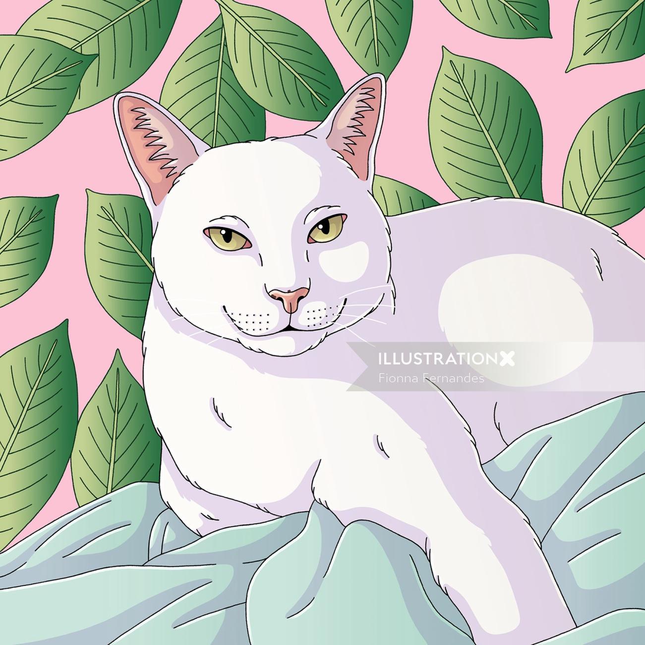 Animals white cat