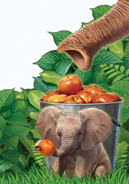 Éléphant 3D avec des pommes